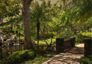 resort grounds where Kauai Writers Conference is held